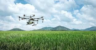 dji, farming, agriculture, uav, plant protection drone, plant protection, farmland, agras, drone, dji agriculture, rice | Pikist